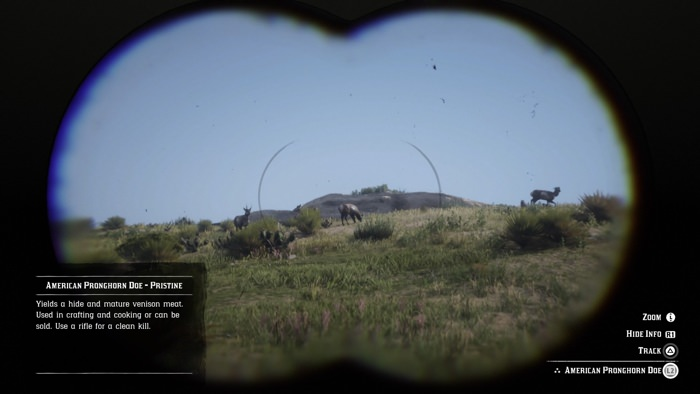 Studying wild animals through the game's binoculars.